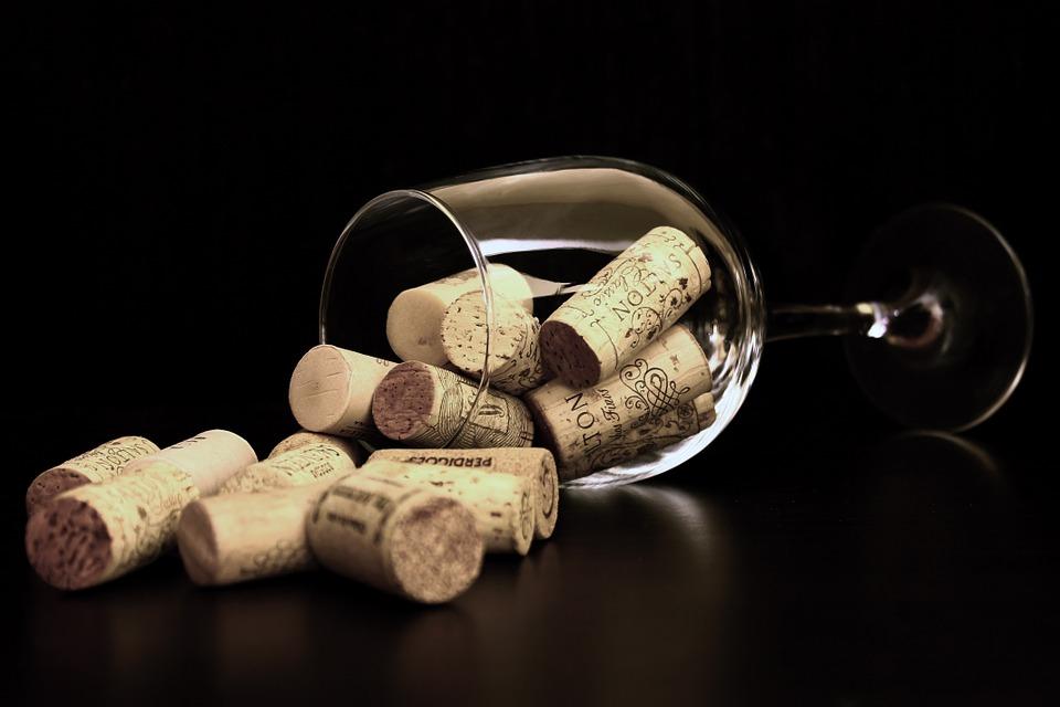 beginners wine course